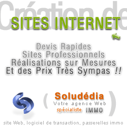 cr�ation de site internet immobilier
